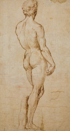 Raphaels Study of Michelangelos David