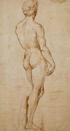 Raphaels Study of Michelangelos David